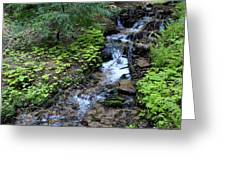 Flowing Creek Greeting Card