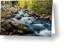 Flowing Creek Greeting Card