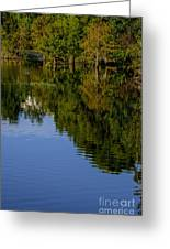 Flowing Reflection Greeting Card