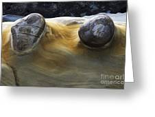 Flowing Rock 4 Greeting Card