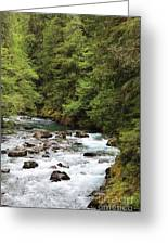 Flowing Through The Trees Greeting Card