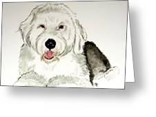 Fluffy Murphy Greeting Card