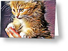 Fluffy Orange Kitten Greeting Card