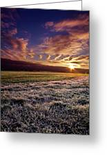 Flushing Frost Greeting Card