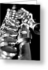 Flute Series II Greeting Card
