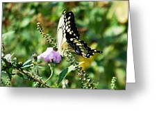 Flutter By 102110 Greeting Card