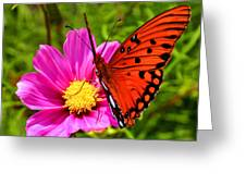 Fritillary Flutterby Greeting Card