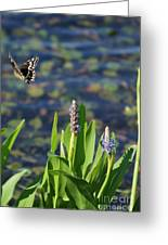 Fly Be Free Greeting Card