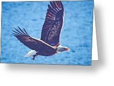Fly By Eagle. 2 Of 3 Greeting Card