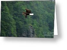 Fly Like An Eagle Greeting Card