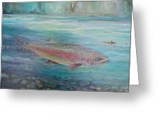 Flyfishing Greeting Card