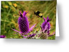 Flying Bee 2 Greeting Card