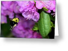 Flying Bee Collecting Pollen Greeting Card