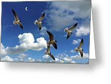 Flying High In The Clouds Greeting Card