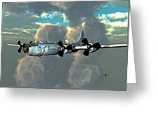Flying Home Greeting Card