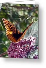 Flying Jewel Greeting Card
