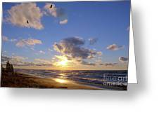 Flying Onshore Two Greeting Card