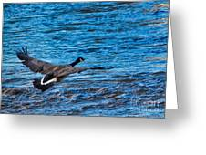 Flying Over Rough Waters Greeting Card