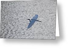 Flying Over Water Greeting Card