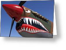 Flying Tiger Plane Greeting Card