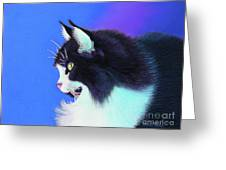 Focus Greeting Card by Tracy L Teeter