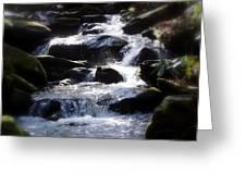 Fodder Creek Greeting Card