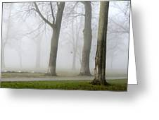 Fog Amongst The Trees Greeting Card