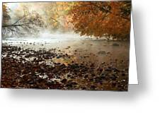 Fog And Color Greeting Card