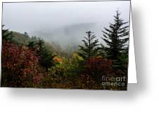 Fog And Drizzle. Greeting Card by Itai Minovitz