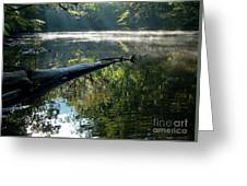 Fog And Reflection Of Stream Greeting Card