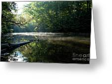 Fog And Reflection On Stream Greeting Card