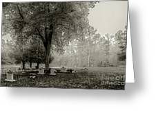 Fog In Cemetery 2383gt_s2 Greeting Card