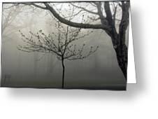 Fog In Shenandoah Greeting Card