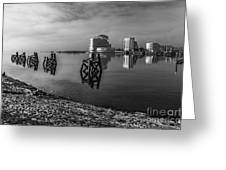 Fog In The Bay 1 Mono Greeting Card