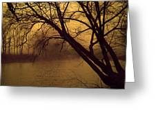 Fog In The Morning. Greeting Card