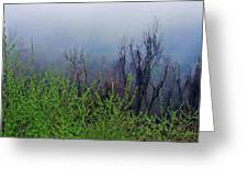 Fog In The Mountains Greeting Card