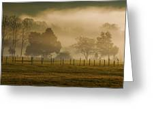 Fog In The Park Greeting Card
