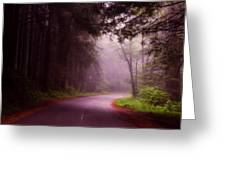 Fog In The Redwoods Greeting Card