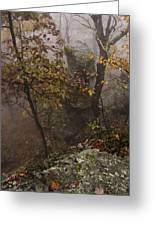 Fog On The Mountain Greeting Card