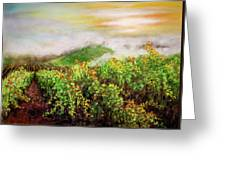 Fog On The Vines Greeting Card