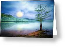 Fog Over The Lake Greeting Card