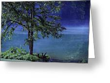 Fog Over The Pond Greeting Card