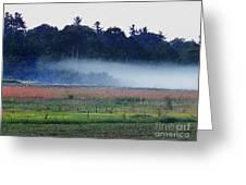 Fog Rolls In Greeting Card