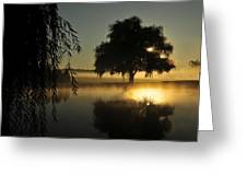 Fog Water And Sun Greeting Card