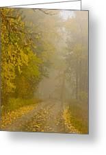 Foggy Autumn Morn Greeting Card
