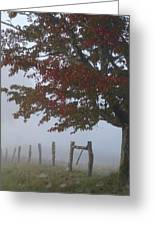 Foggy Autumn Morning In Cades Cove Greeting Card