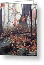 Foggy Fall Woodland Morning Greeting Card