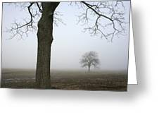 Foggy Field Greeting Card