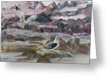 Foggy Gulls Greeting Card