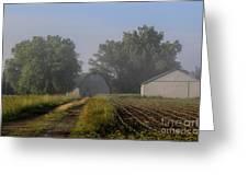 Foggy Mist Lane Greeting Card